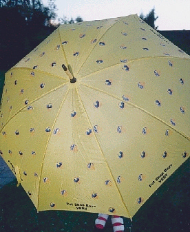 the Very Umbrella - given as promotional item together with the CD, when Very was released in 1991